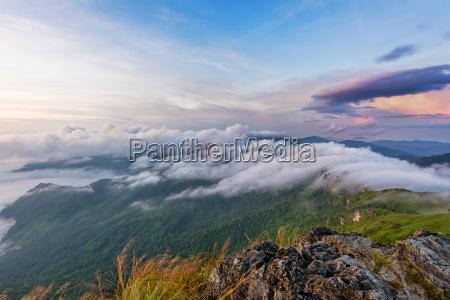 natur im sonnenaufgang auf berg thailand