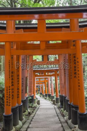 fushimi inari taisha shinto shrine vermilion