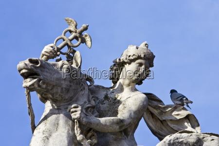 pigeon ruht auf einem pferd und