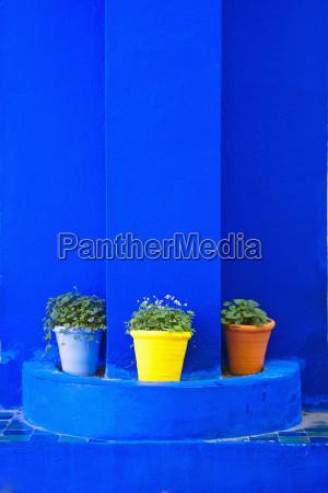blau fahrt reisen stadt farbe blume