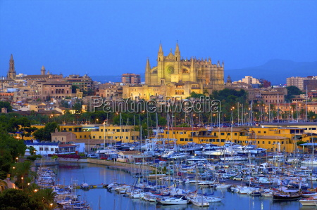 cathedral and harbour palma mallorca spain