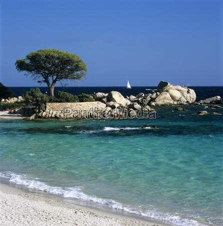 palombaggia beach near porto vecchio south
