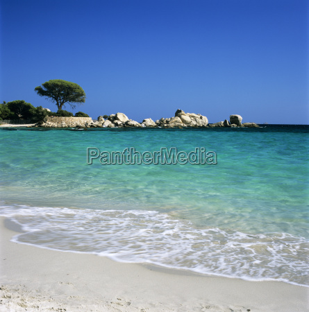 palombaggia beach near porto vecchio south