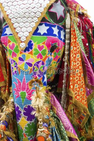 colorful elephants at the jaipur elephant