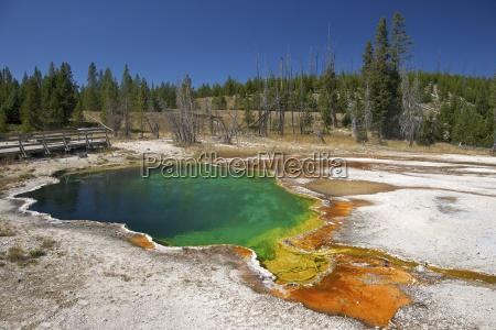 fahrt reisen farbe baum amerikanisch nationalpark