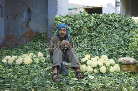 der indische mann der blumenkohl verkauft