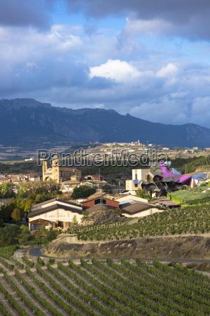 marques de riscal bodega winery vines
