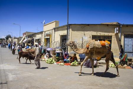 market in adi keyh eritrea africa