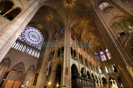 rose window and the vaults of