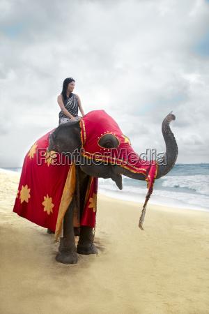 sri lankan woman sitting on an