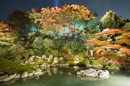 night illuminations of temple gardens shoren