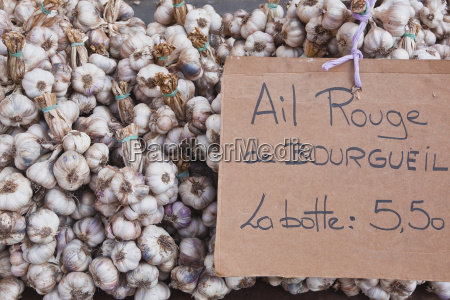 bulbs of garlic on sale at