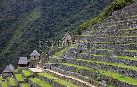 agricultural terraces machu picchu peru