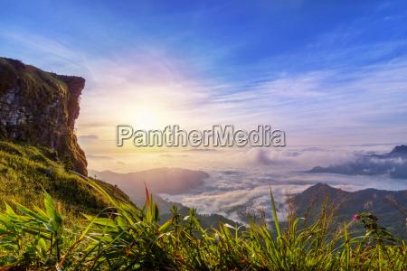 sonnenaufgang auf phu chi fa forest