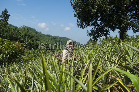 a jhum farmer stands in a