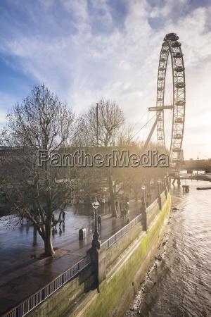 london eye millennium wheel at sunset