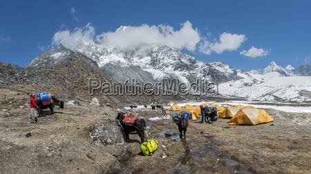 nepal himalaya khumbu ama dablam base