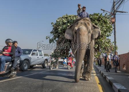 nepal himalaya kathmandu traffic on the