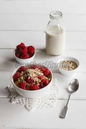 bowl of porridge with raspberries