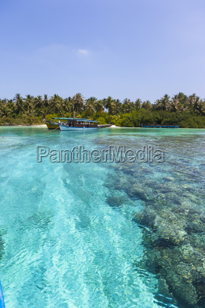 maledives sued male atoll embudu boote