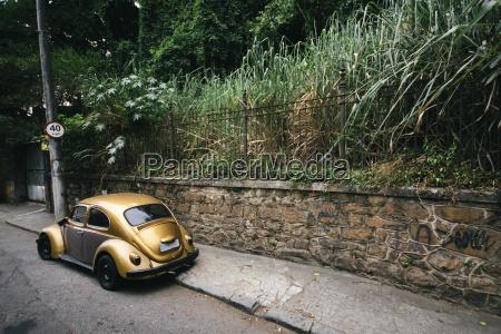 giardino traffico auto veicolo mezzo di