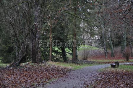 deutschland baden wuerttemberg parkbank im park