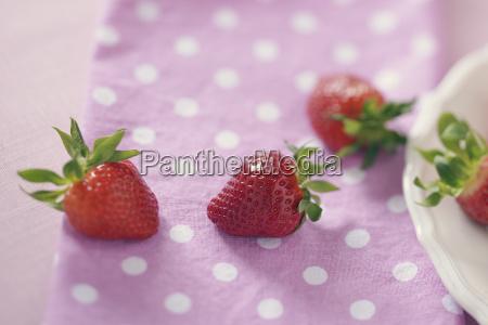 frische frucht obst fotografie photo foto