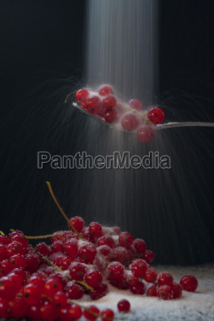 red currant on spoon close up