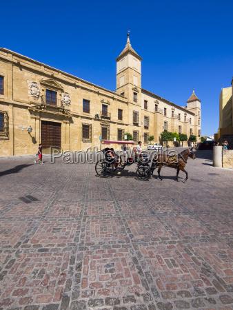 spain andalusia cordoba diosece museum