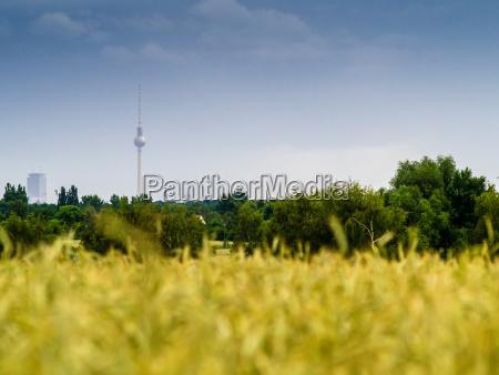 deutschland berlin berlin blankenfelde luebars field
