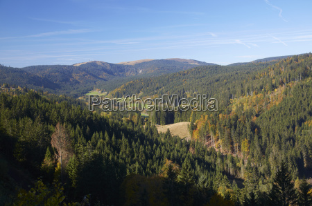 germany baden wuerttemberg black forest view