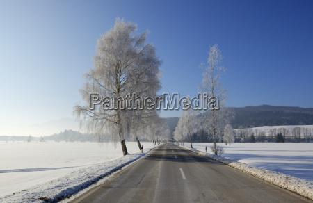 germany sindelsdorf empty county road in