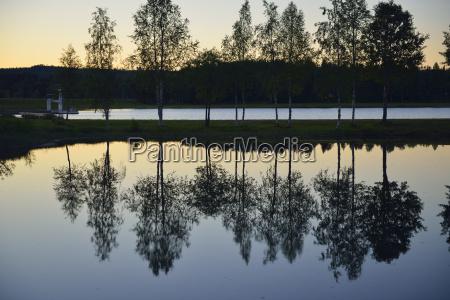 fahrt reisen baum laubbaum reflexion schweden