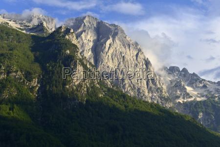 fahrt reisen baum nationalpark wolke spitze