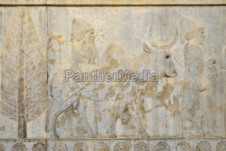 iran persia persepolis delegation bas relief