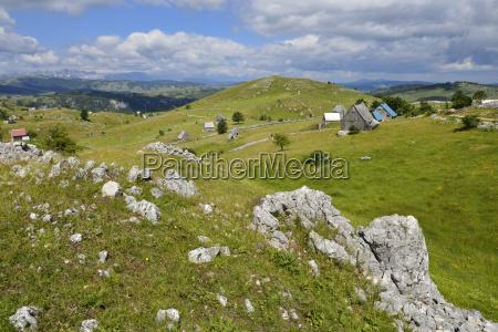 montenegro crna gora sherper villige crna