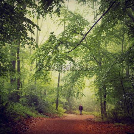 germany man walking in the woods