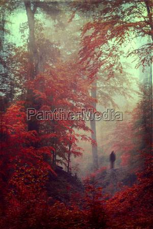 niebla al aire libre rojizo historia