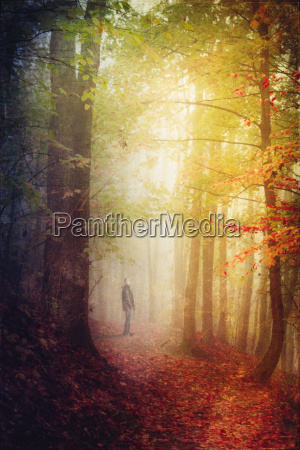germany autumn forest man standing on