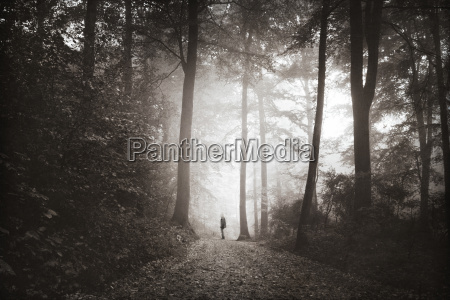 man walking on forest track in