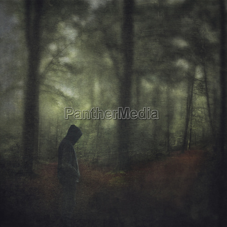 man with hooded jacket in forest