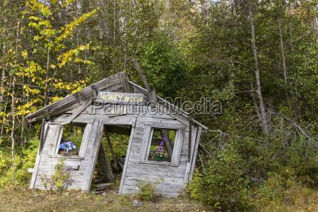 usa alaska view of hut