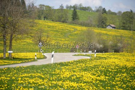 germany bavaria east allgaeu seeg view