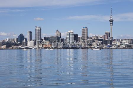new zealand view of waitemata harbour