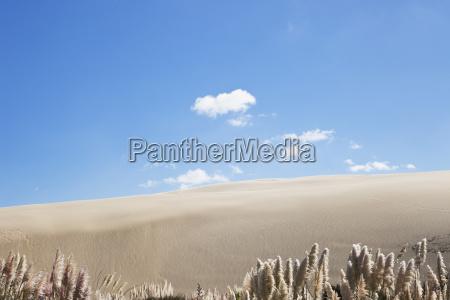 new zealand view of te paki