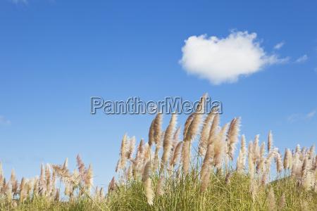 jazda podrozowanie oblok chmura chmurka chmurki