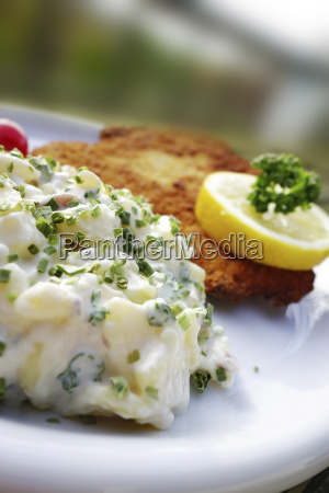 plate of schnitzel and potato salad