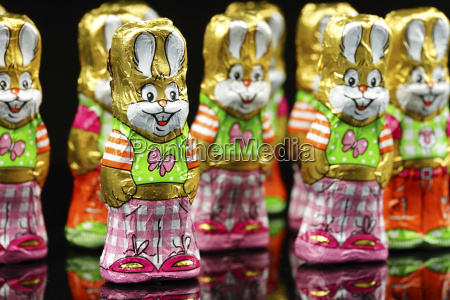 chocolate easter bunnies on black background