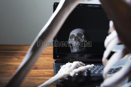 skeleton, die, im, bereich, monitor, des, computers - 21084789