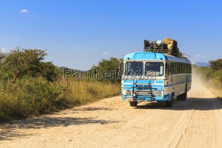 blu viaggio viaggiare albero traffico parco